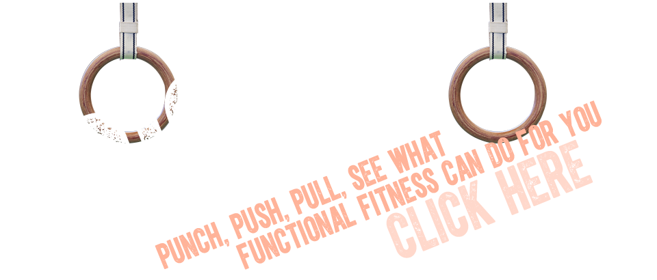Functional fitness and cross training with our RigFit zone